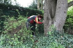 Visual Tree Assessment door Ellen