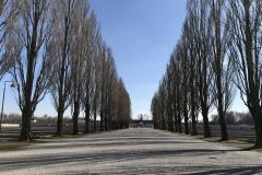 Populieren geplant door de gevangenen van concentratiekamp Dachau (1933-1945)